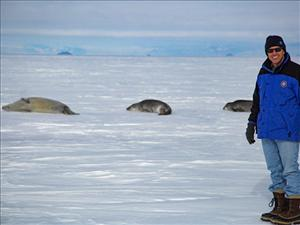 Captain Chris Fox encounters fur seals resting on the ice near the dock in Antarctica.